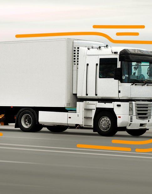 Für Schwertransporte setzt die swissconnect ag auch LKWs ein